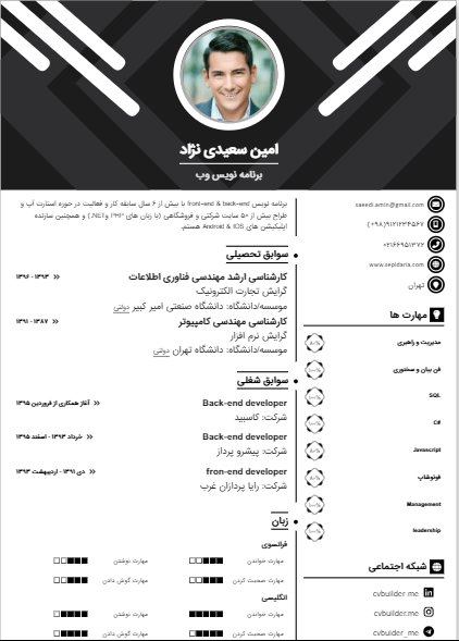 Sample resume of template29